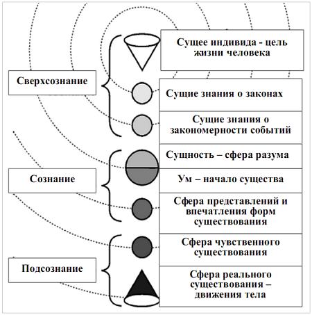 Рис. 1. Модель основных сфер функционально-коммуникативной деятельности человека одушевленного и последовательно-иерархического взаимодействия с ними законов коммуникации.