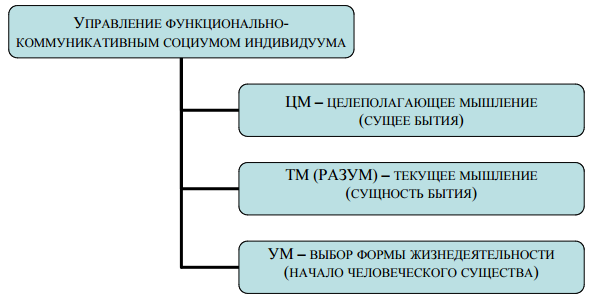 Рис. 3. Модель самоуправления функционально-коммуникативного социума индивидуума.