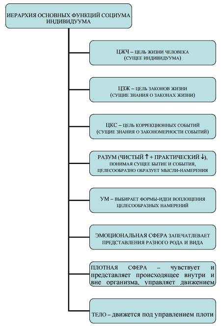 Рис. 4. Модель иерархии внутреннего функционально-коммуникативного социума индивидуума